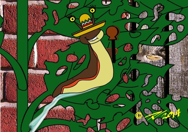 Spanish Slug devouring Hostas. Wearing Sombrero and clacking castanets.